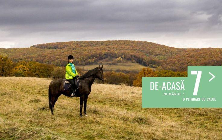 7 de-acasă (4) - Cu calul spre satele săsești | Ecoturism si calatorii responsabile7 de-acasă (4) – Cu calul spre satele săsești – Ecoturism si calatorii responsabile