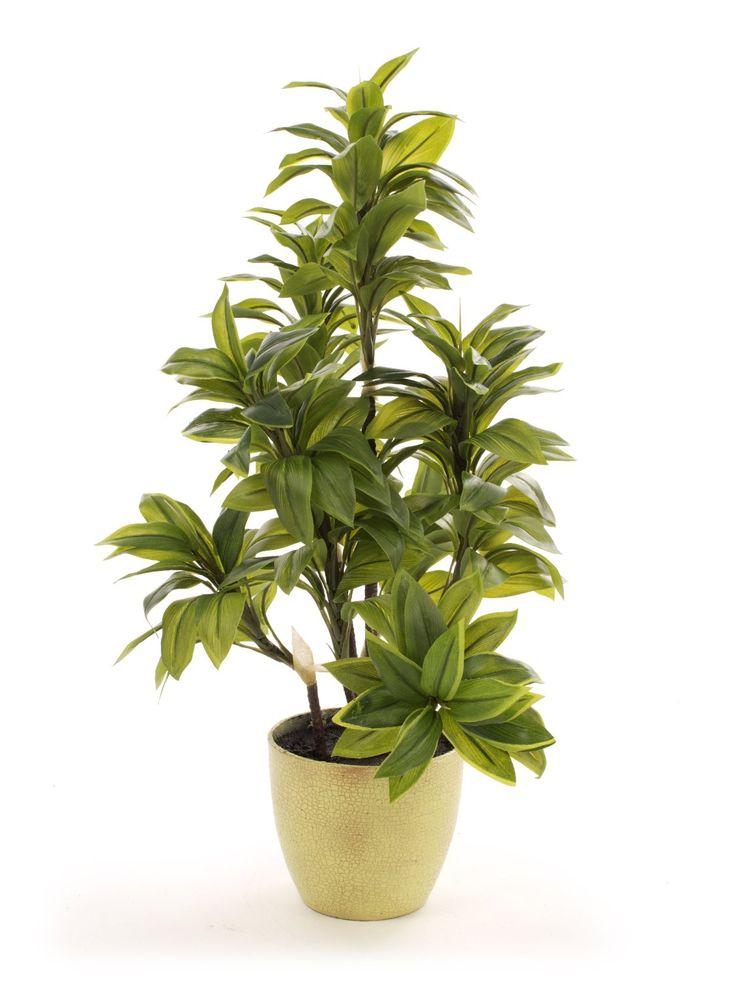 256 best Artificial Indoor Garden images on Pinterest | Aloe ...