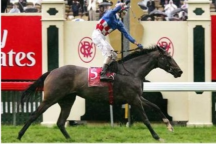 Makybe Diva Melbourne Cup 2004