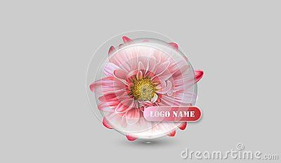 Crystal clear chrysanthemum translucid company logo