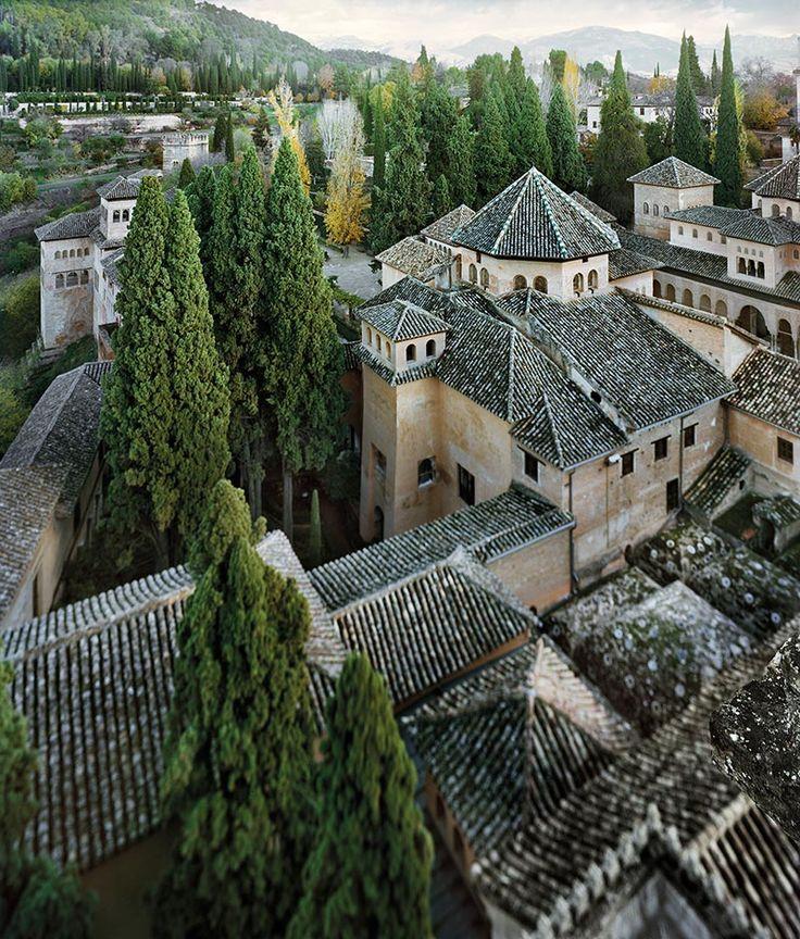 Los cipreses de los patios de Lindajara. Una visión inédita de la Alhambra por Jean Laurent y Fernando Manso. Fotografía © Fernando Manso. Cortesía Museo Arqueológico Nacional.