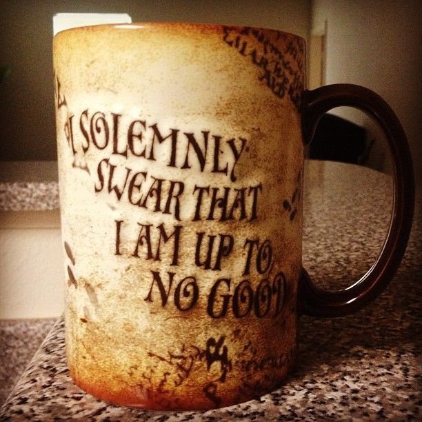"""I solemnly swear that I am up to no good..."""