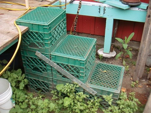 repurposing milk crates. More Plastic Crates Ideas, This Old House, House Ideas, Crates Stairs, Crates Step, Recycled Ideas, Plastic Milk Crates Diy, Repurposed Plastic Crates, Milk Crates Gardens crate steps, top with pallet wood, maybe make a case exposing crate grin in front and on side(s) milk crate stairs leading to a deck in the this old house Home Inspection Nightmares XXVIII gallery Check more at http://blog.blackboxs.ru/category/garden/