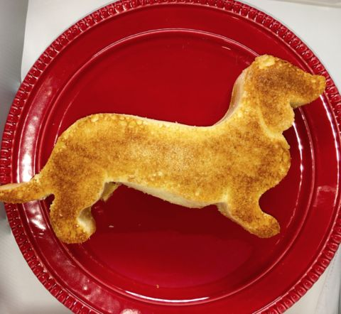 1000 Ideas About Dachshund Cake On Pinterest Dog Cakes