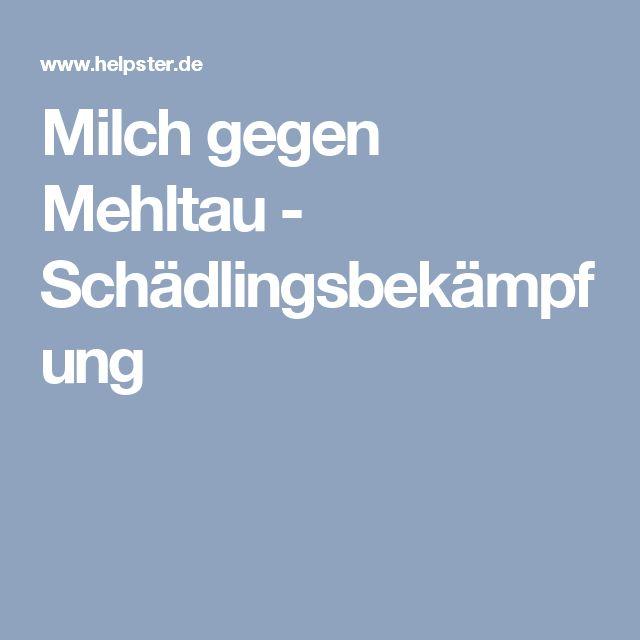 Milch gegen Mehltau - Schädlingsbekämpfung