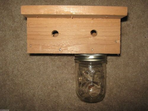 Carpenter-Bee-Trap-for-wood-boring-bees-they-go-in-but-never-come-out