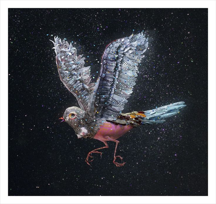 Nightingale, by Del Kathryn Barton