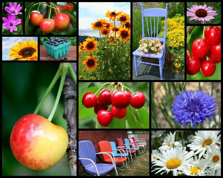Scenes of Summer: Summer Scene, Summer Fun, Summer Time, Sweets Summertime