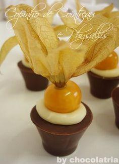 copinho de chocolate com physallis: hummmmmmm!