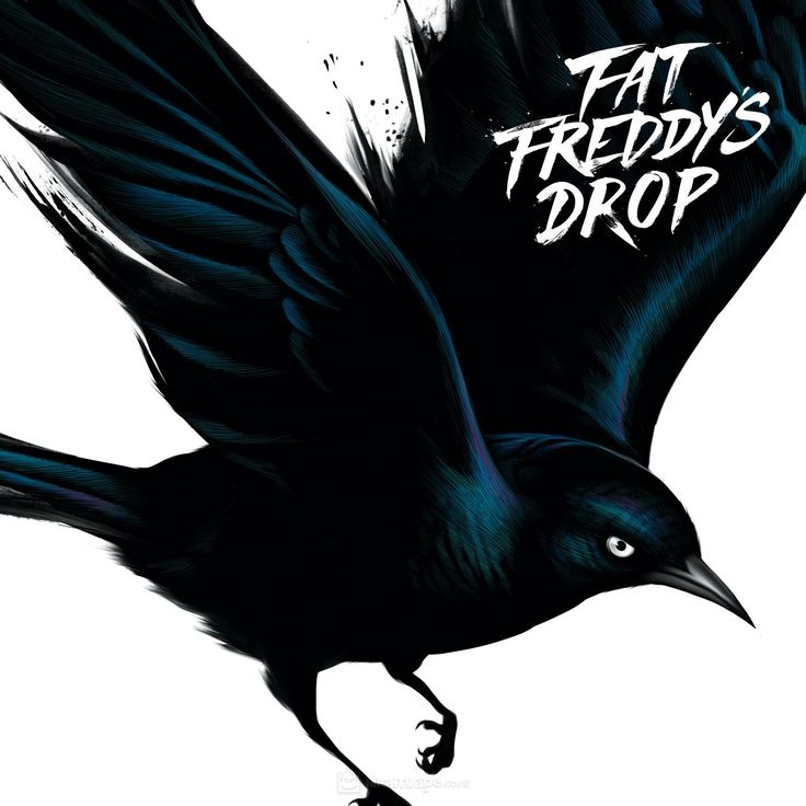 Fat Freddy's Drop - Blackbird (Album cover)
