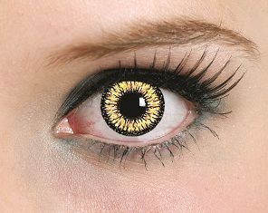 Wonder if these would shine this bright since my eyes are so dark? Gold Dragon Color Contact Lenses(pair)