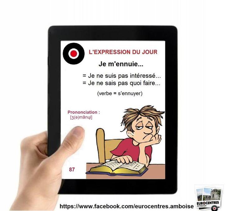 43 best expressions au figuré images on Pinterest French - classe energie e maison
