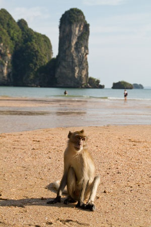 25+ best ideas about Ao Nang Beach on Pinterest  Krabi ...