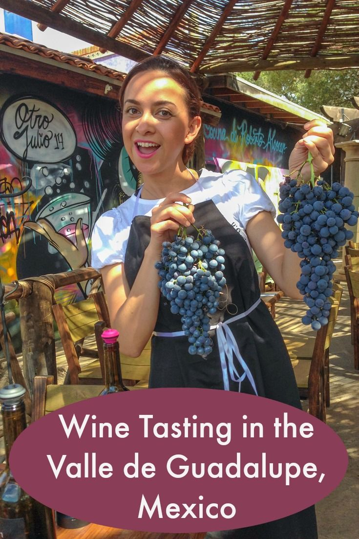 An easy weekend getaway for Californians --> Wine tasting in Baja California, Mexico: http://www.everintransit.com/valle-de-guadalupe-mexico/