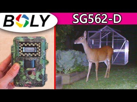 BOLY SG562-D Trail Camera REVIEW + Unboxing Hunting Spy Cam Best u can b...