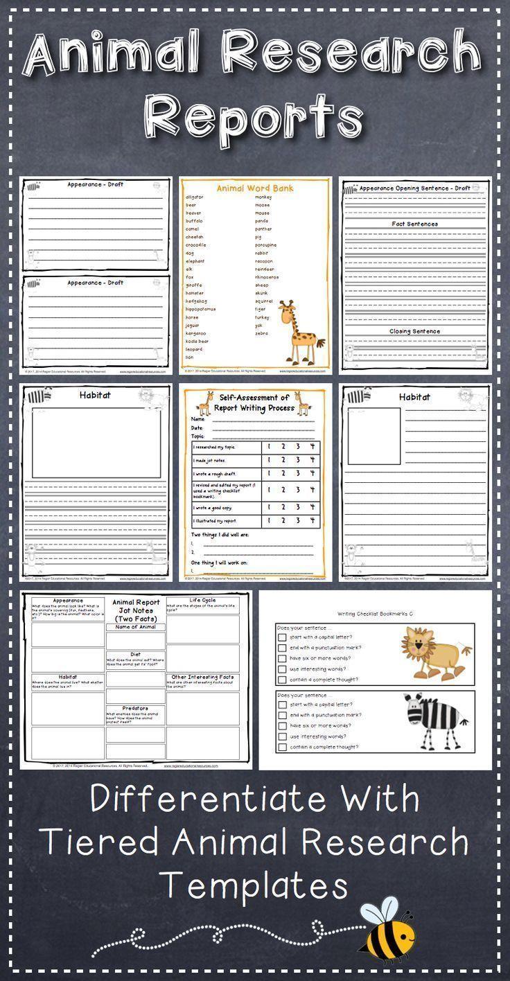 Animal Research Project Animal Report Writing Digital Pdf