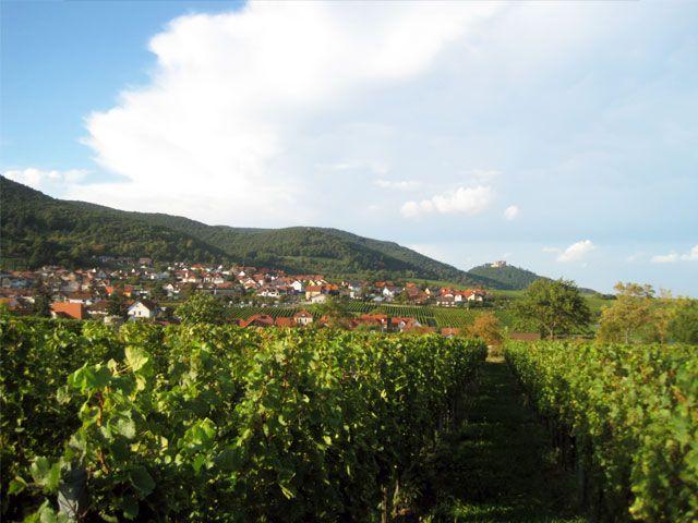 Lieblingsplatz: Die Pfalz. Ein Bericht von Melanie Blankenstein