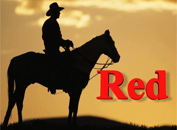 """Red Blend E Juice: Our Red blend e juice is the perfect tobacco flavor for people used to smoking Marlboro Reds. Comes in a variety of strengths and bottle sizes. Get 10% off your first order across all products when you buy online at http://www.healthiersmoker.ie please use discount code: """"pinterest"""" at the checkout!"""
