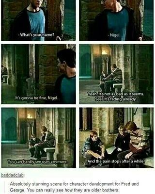My absolute favorite Fred and George scene in the entire series, and they're two of my favorite characters because of their antics