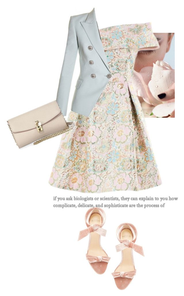 """Untitled #647"" by jovana-p-com ❤ liked on Polyvore featuring Alexandre Birman, Balmain and Dolce&Gabbana"
