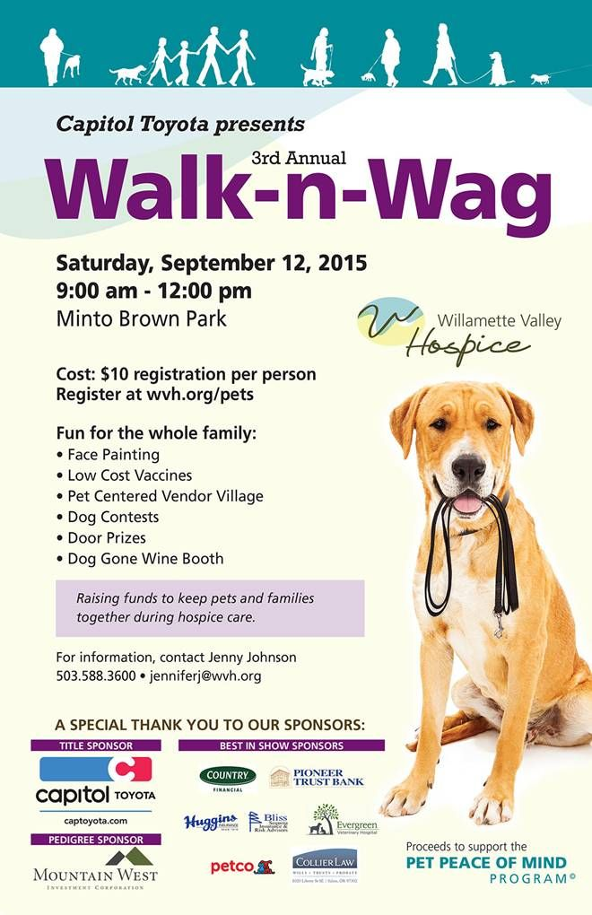 Walk N Wag 2015 Dog Contest 11x17 Poster Pets
