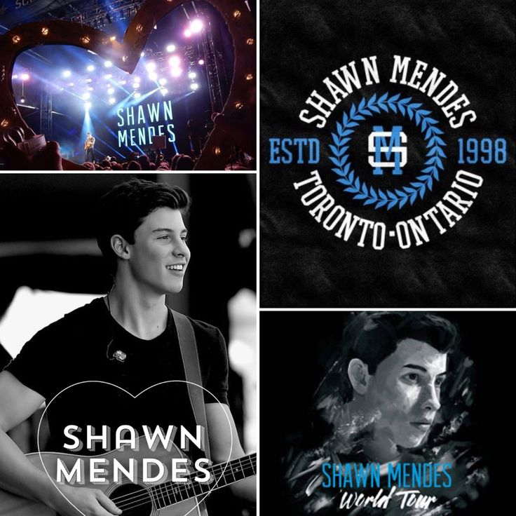 Shawn Mendes is the best