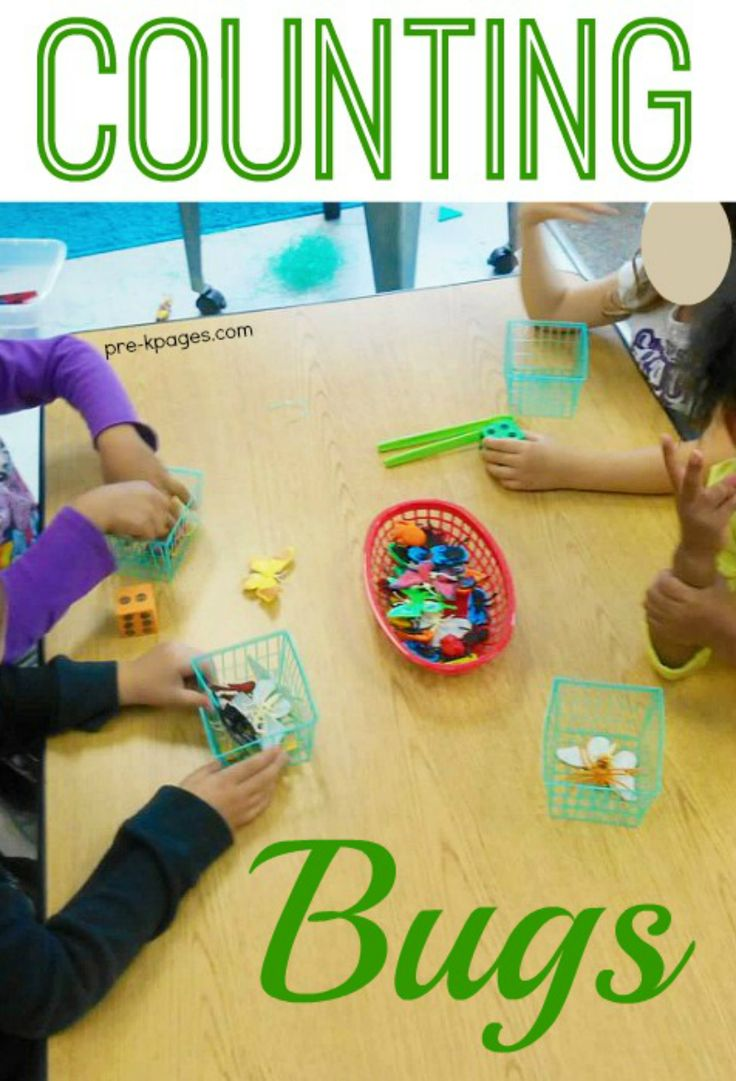 Insect Counting Game for Preschool