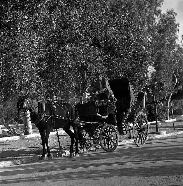 Ο αμαξάς. Κόρινθος 1959 Nick DeWolf