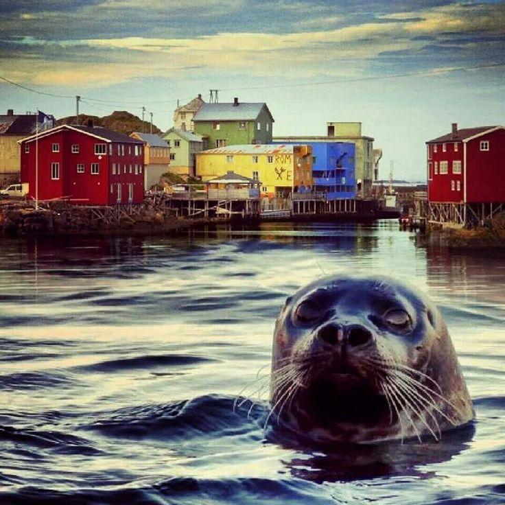 Nyksund i Vesterålen. Norway