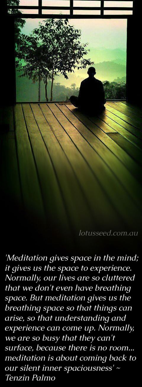 Tenzin Palmo quotes by lotusseed.com.au