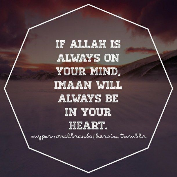 Tamil Muslim Imaan Quotes: 1000+ Muslim Quotes On Pinterest