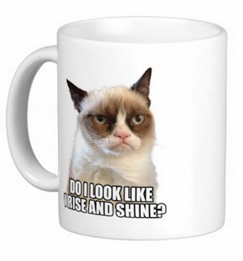 Grumpy Cat Mug for $17.95 I seriously must have this mug!