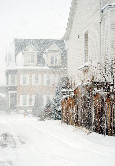 Winter Wonderland /