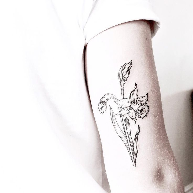 """[ daffodil ] one of my super fun flash pieces for Nat from my guest spot at Two Hands Tattoo in Auckland • such a beautiful country can't wait to go back"""
