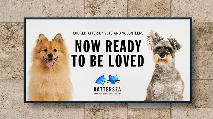 Pentagram Rebrands Battersea Dogs And Cats Home To Visualise Personality Over Sentiment Battersea Dogs Dog Charities Battersea Dogs Home