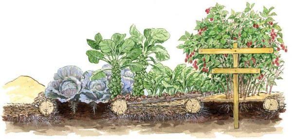 Building Garden Soil With Wood Mulch
