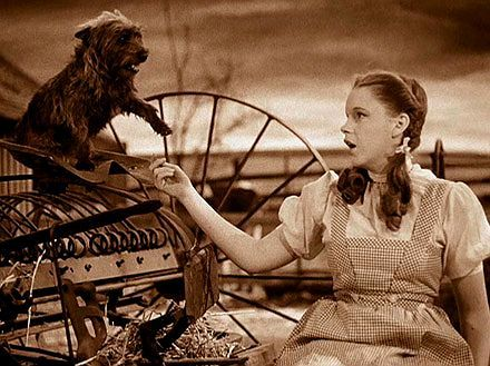 Toto, The Wizard of Oz Dog (1932-1945)