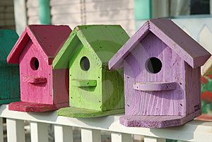 Jake and Papa can build some  birdhouses for us to paint.