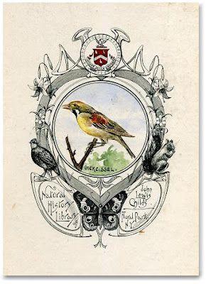 birdVintage Bookplate, Birds Ilustraciones, 19Th Century, Ex Libri, Art Birds, 蔵書票 Exlibris, Beautiful Bookplate, Vintage Design, Birds Nature