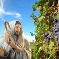 Jesús, la vid verdadera - 04/14/16 by Iglesia DEP on SoundCloud
