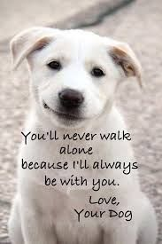 You'll never walk alone, because I'll always be with you. Love, your dog.