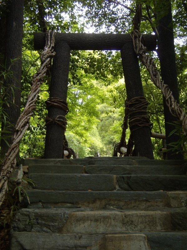 It is a vine bridge similar to the ones that can be found in the Iya Valley in the Tokushima Prefecture.