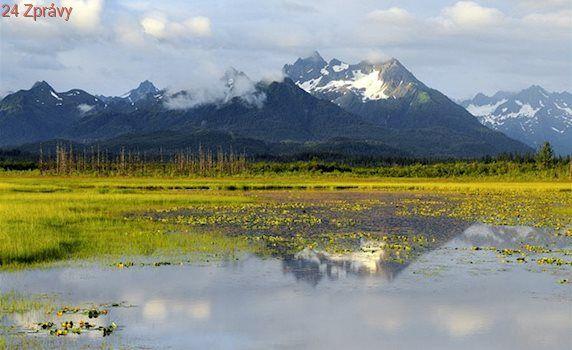 Ochrana přírody jde stranou. Trump chce těžit ropu v rezervaci na Aljašce