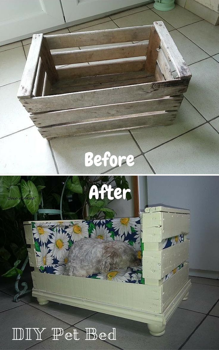Before And After Diy Old Pallet Cushioned Pet Bed