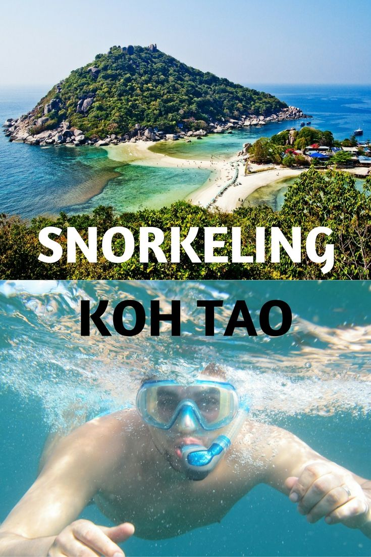 Snorkeling? Scuba diving? Sign us up. We love Thailand, and we've visited the country several times. This trip, we included a visit to Koh Tao. Koh Tao is reputed to have some of Thailand's best snorkeling and diving. So we booked a snorkeling tour for the day around Koh Tao. Did we see any fish? Read on...