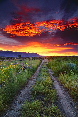 Galen Rowell - Eastern Sierra Sunset He and his wife ...