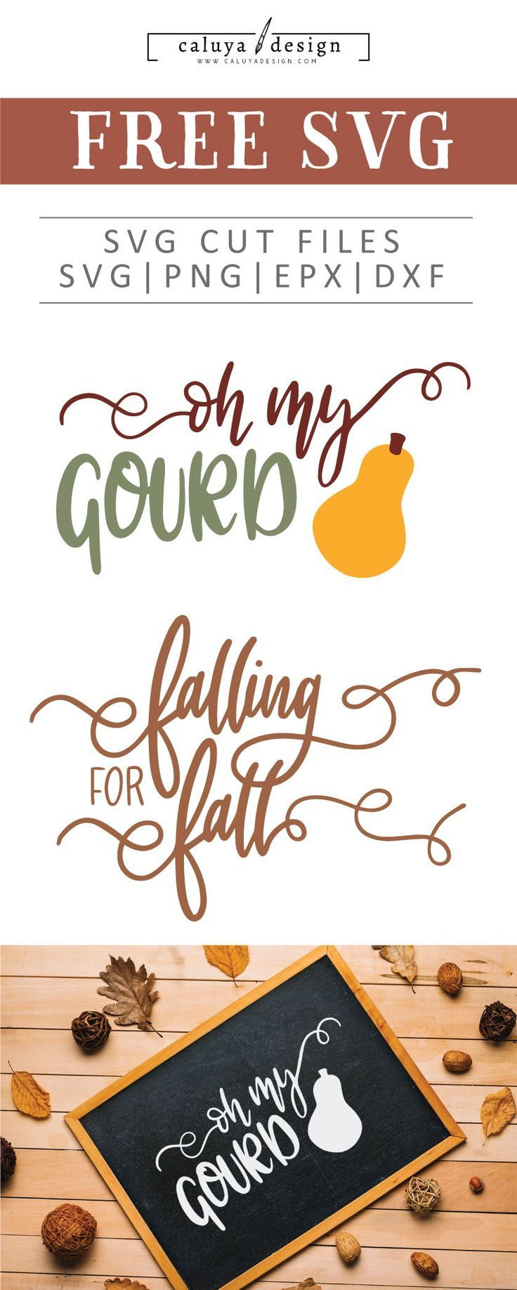 Free Oh My Gourd Svg Png Eps Dxf By Caluya Design Free Printable Clip Art Silhouette Cards Cricut Halloween