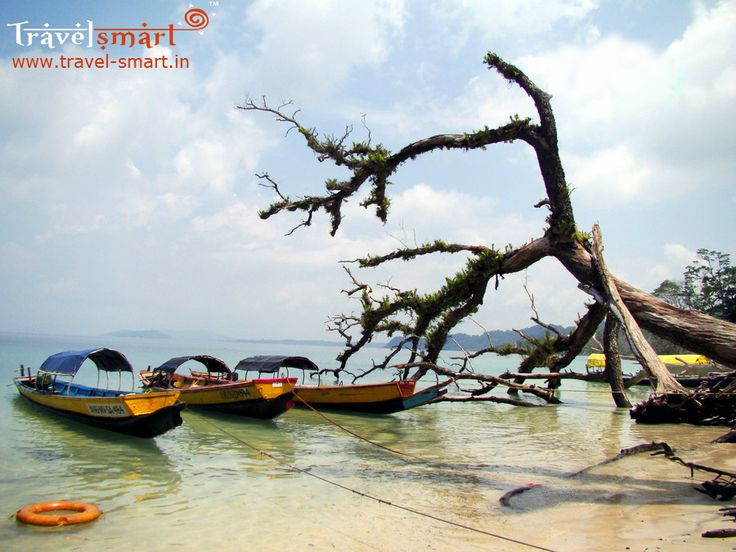 Honeymoon in the Andamans  Andaman Islands is a charming escape from the bustle of cities. Beautiful beaches, exhilarating water sports, what could be a better romantic setting for the honeymoon than Andamans. Swim with sea turtles and practice the art of doing nothing on glorious beaches. Contact us for smarter deals: +91 93419 18386 / +91 98437 63464  #AndamanIsland #AndamanTourPackeges #HoneymoonPackages #Travel #Honeymoondestinations