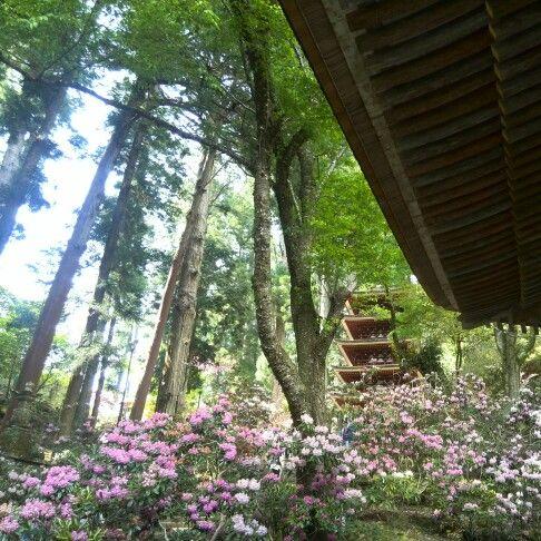 nara murouji,Japon