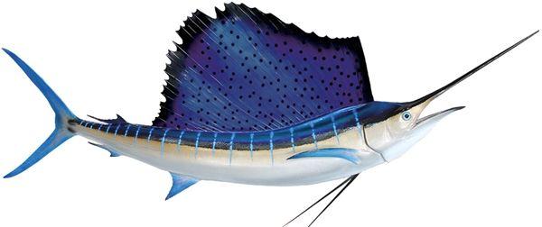1000 ideas about teen headboard on pinterest mermaid for Global fish mounts